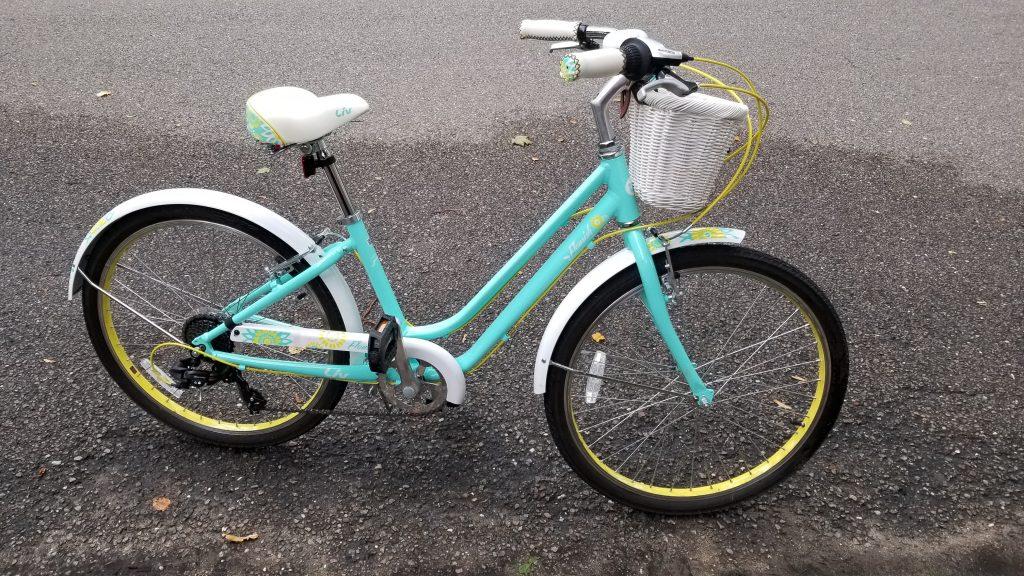 2017 Liv Flourish Bike