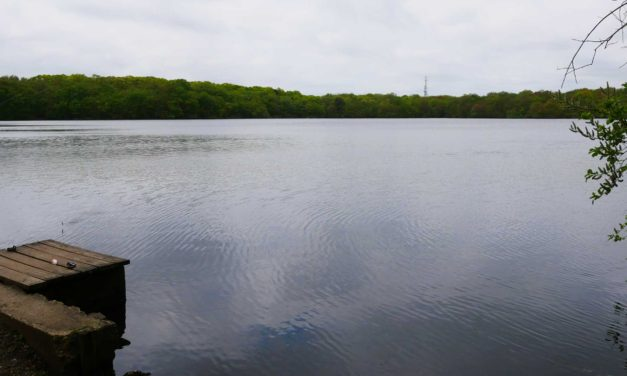 Babylon Village Board To Discuss Fishing Regulations with Proposed Local Law 11