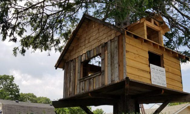 Babylon Village Tree House News Round Up