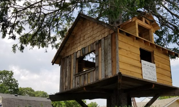 Babylon Village Tree House News Round Up
